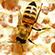 Læs mere om: Bier og honning